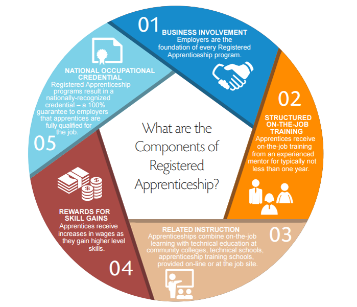 5 Components of Registered Apprenticeships