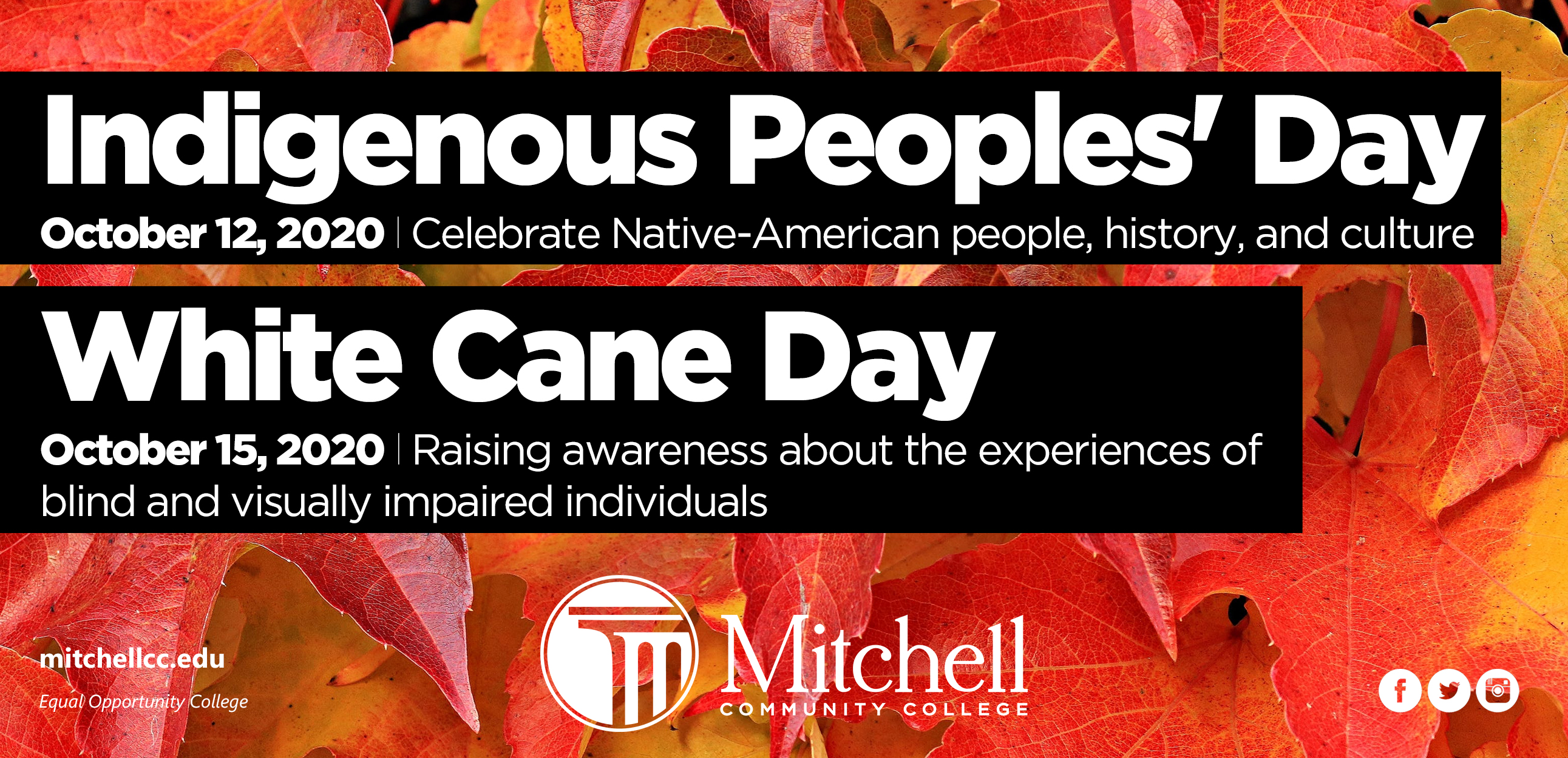 Indigenous People's Day, White Cane Day
