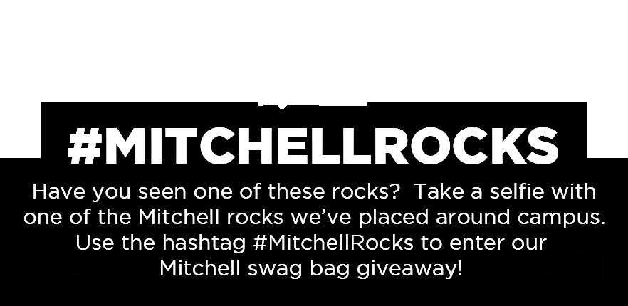 MitchellRocks-content.png