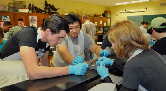 Students work together in a campus biology lab